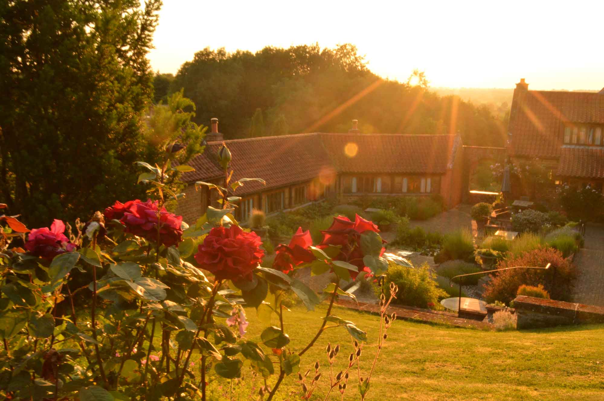 Heath Farm Courtyard evening sun taken from the top garden