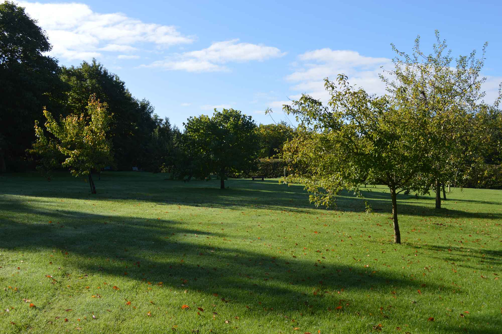 Heath Farm Holiday Cottages Orchard in the Oxfordshire Cotswolds