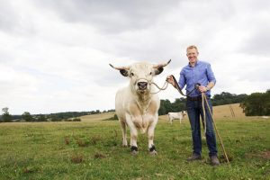 Adam Henson with a White Park bull at Cotswold Farm Park Near Heath Farm Holiday Cottages