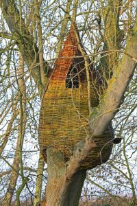 Wondewood creating beautiful structures from willow and hazel grown at Heath Farm Holiday Cotatges